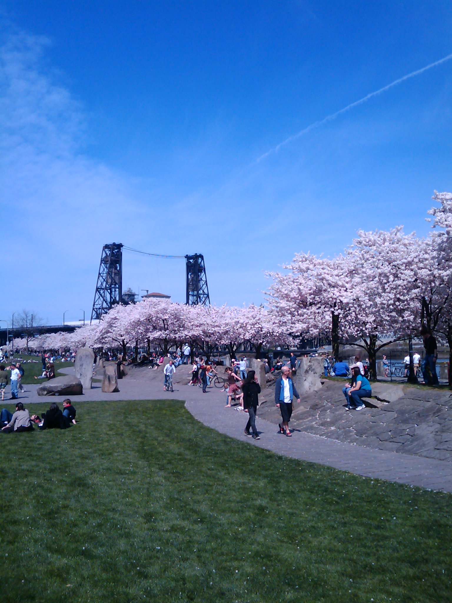 Tom McCall Waterfront Park, Portland, Oregon