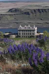 Maryhill Museum with spring lupines. Photo: NYLAND WILKINS