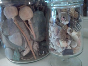 Life and death in a jar. Photo: Laura Grimes