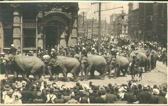Circus Parade, Albany, NY, ca. 1910