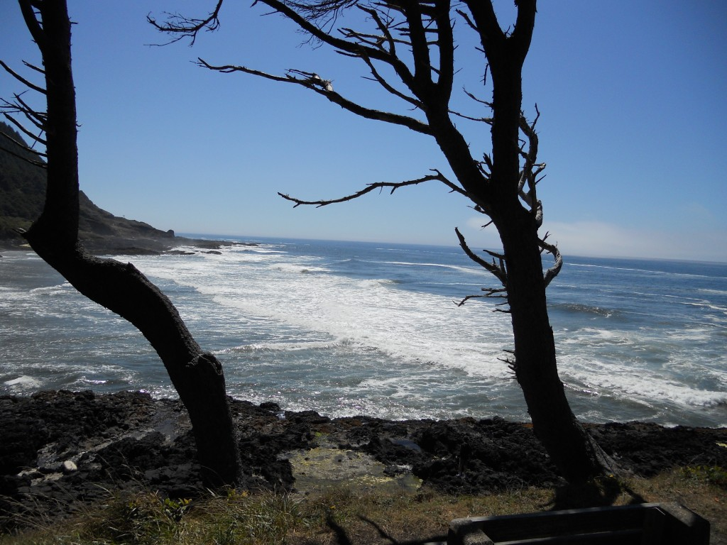 Oregon Coast near Devil's Churn and Cape Perpetua