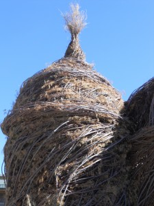 The dome of Patrick Dougherty's stick-structure in Ketchum, Idaho.