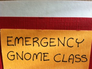 Emergency Gnome Class
