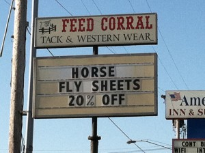 Horse fly sheets